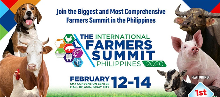 Jiangshan will attend the 2020 Philippines exhibition