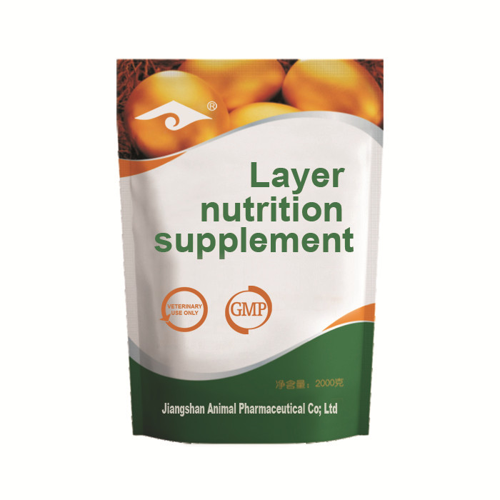 Layer nutrition supplement to increase the egg quantity